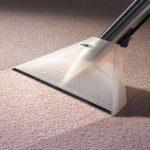 Как очистить ковер в домашних условиях